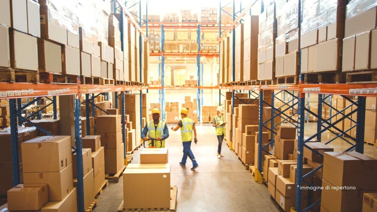 lmm logistics azienda leader italia
