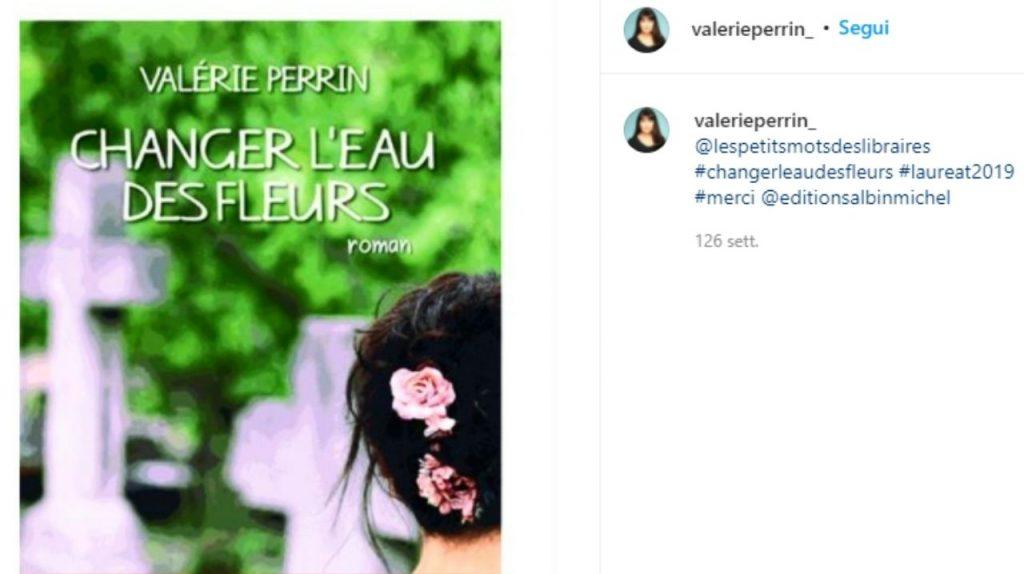 Cambiare l'acqua ai fiori libro di Valerie Perrin