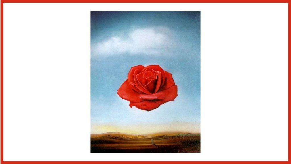 Rosa meditativa di Dalì